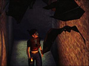 Morcegos (Bats)